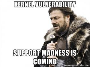 kernel vulnerability meme